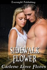 FloresSidewalk-Flower cover